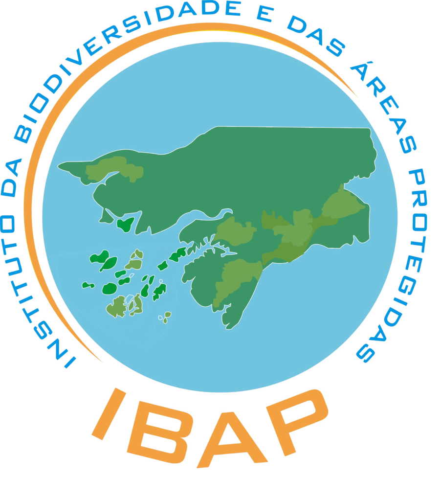 logo_ibap_transp