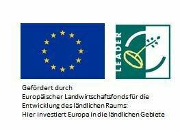 EU Logo-Leader Logo