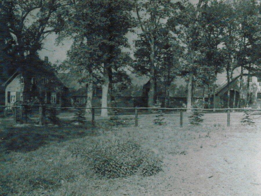 Altes Bild der Hofstelle mit Koppel
