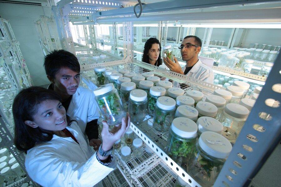 Pflanzentechnologin