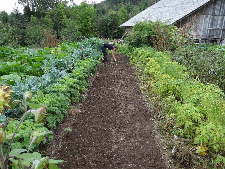 Gartenbaufachwerk