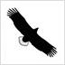 Seeadler-Rundweg-Logo