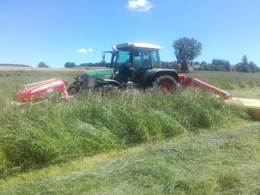 Gras ernten