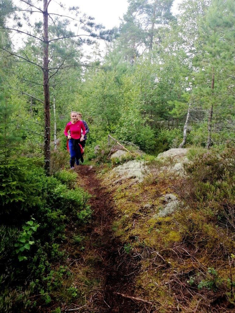 Nur_zu_empfehlen_ist_gemeinsames_Training_zur_Einstimmung_auf_den_schwedischen_Wald