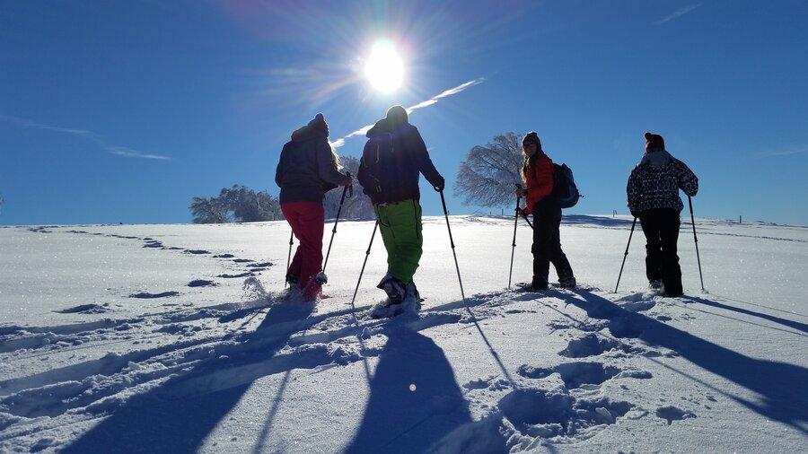 Schneeschuhtour 2