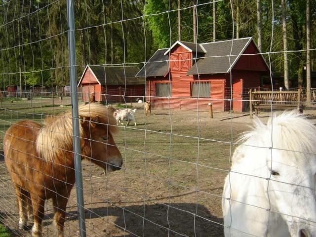 Martzschpark mit Tiergehege