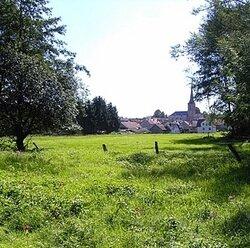 Kälberwiesen