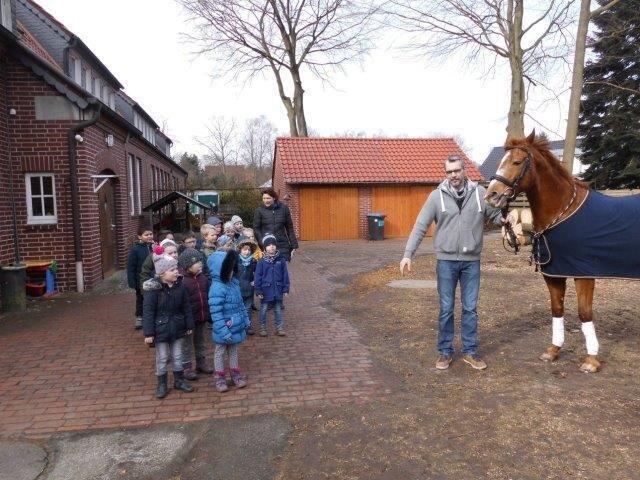 DSCI0087_Pferd