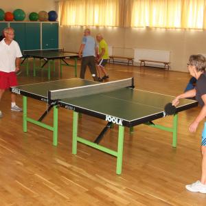 asl-aktive-senioren-leipzig-sport-tischtennis-300x300