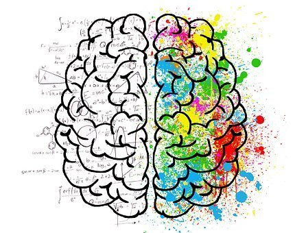 brain-2062057_340