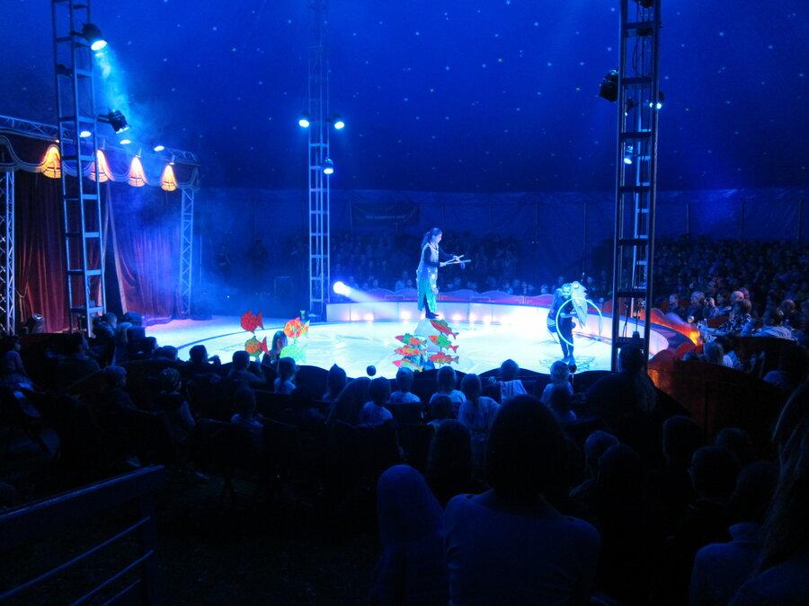 Zirkus 5