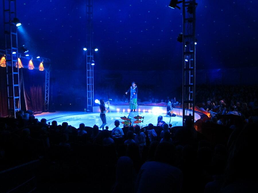 Zirkus 6