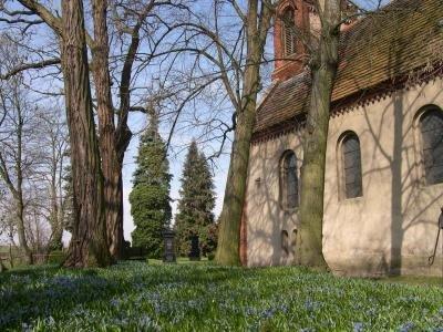 Kirche Butzow