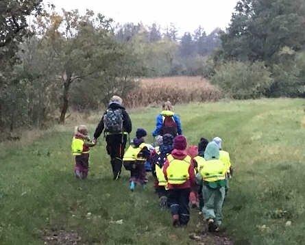 Auf den Weg in den Wald