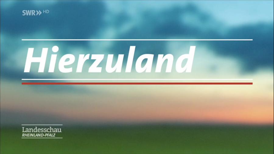 Hierzuland_Merzweiler_29012010_SWR