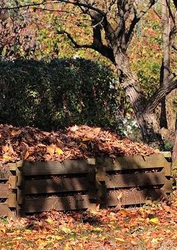 autumn-3755125_640-bearb