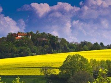 Blick auf Tannenburg