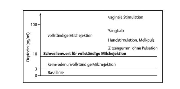 Vaginale_Stimulation