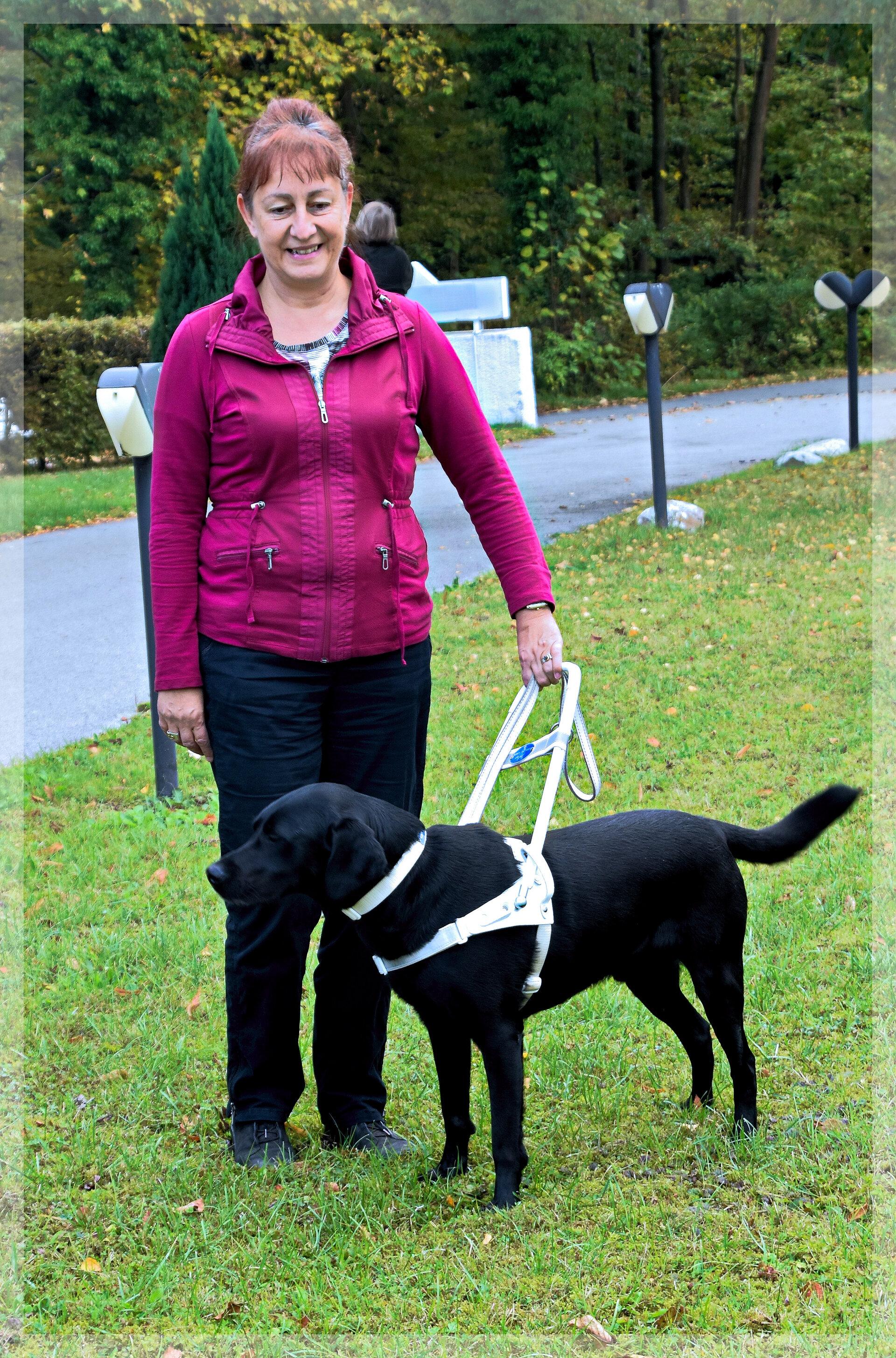 Aureen mit schwarzem Labrador Tommy im Geschirr