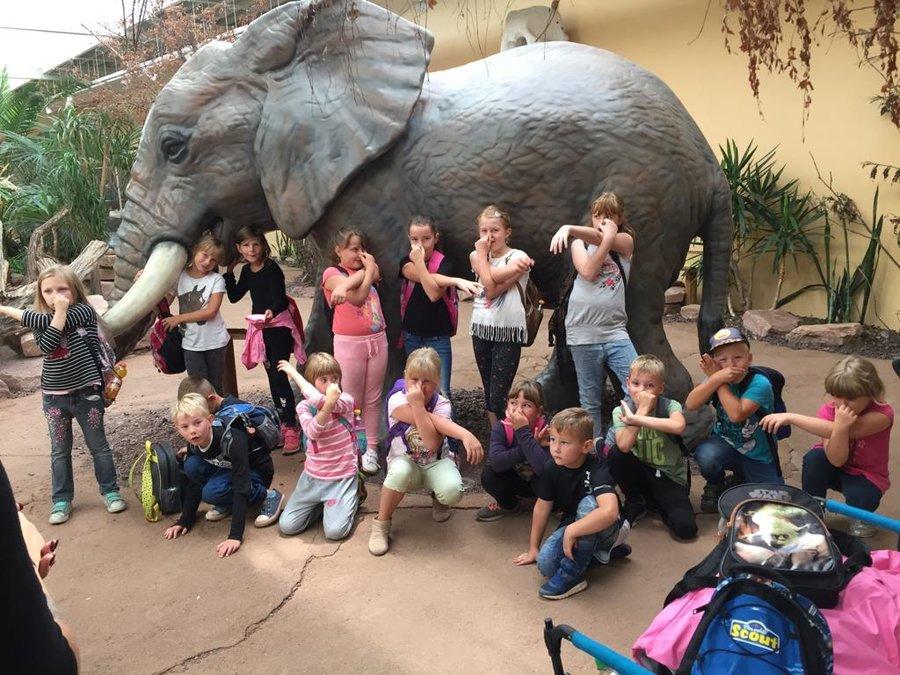 spannende Ausflüge, wie zum Beispiel in den Zoo nach Magdeburg