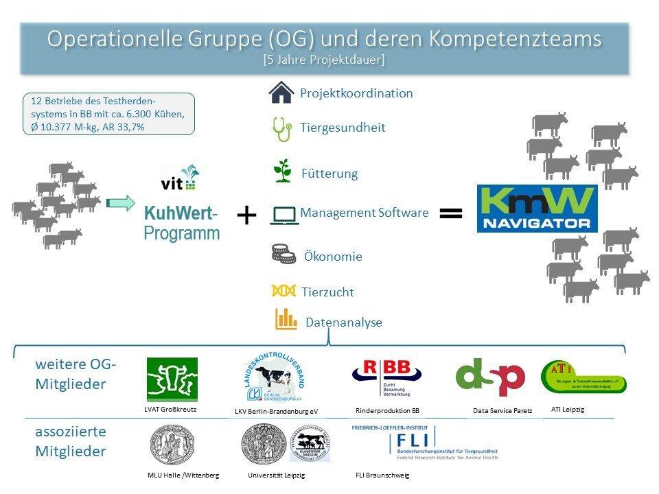 Operationelle Gruppe (OG) und deren Kompetenzteams