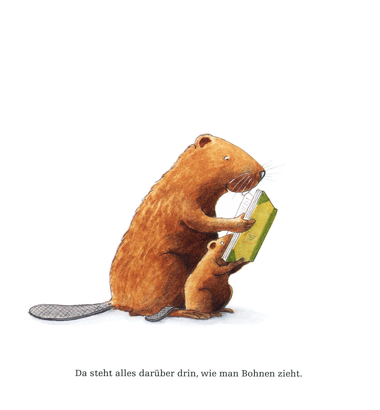 kasimir_pflanzt_wei_e_bohnen_kinderbuch_von_oetinge_illustration_bieber