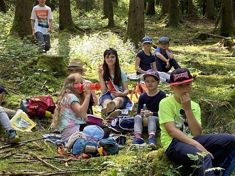 Waldtag 3b