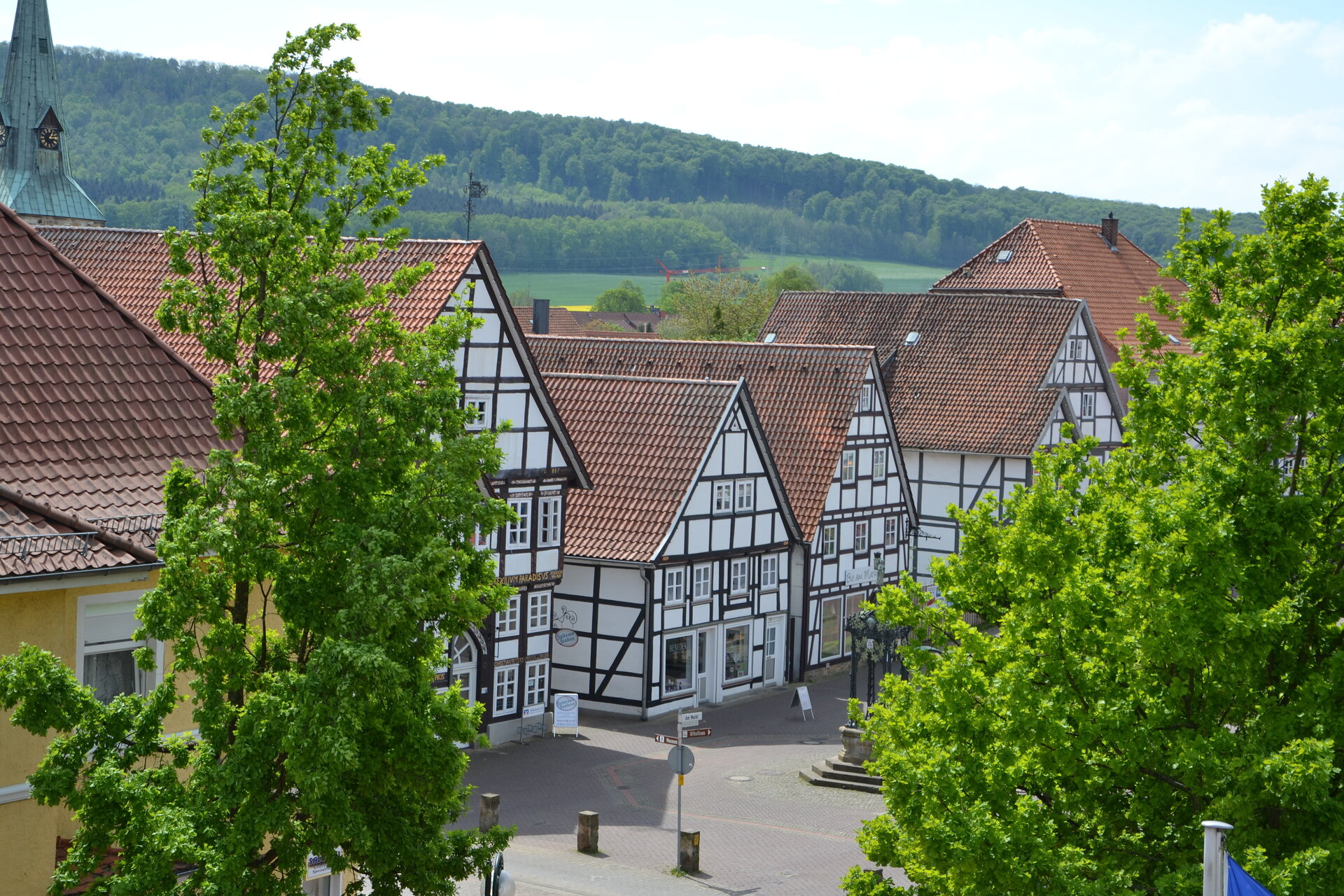 Blick auf die Springer Altstadt