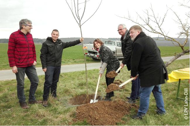 Staatsministerin Priska Hinz im Frühjahr 2019 bei der Pflanzung eines Apfelbaums anlässlich des Starts der 2. Phase des Waldsolmser Streuobstprojektes, welches mit Mitteln der Umweltlotterie finanziert wurde
