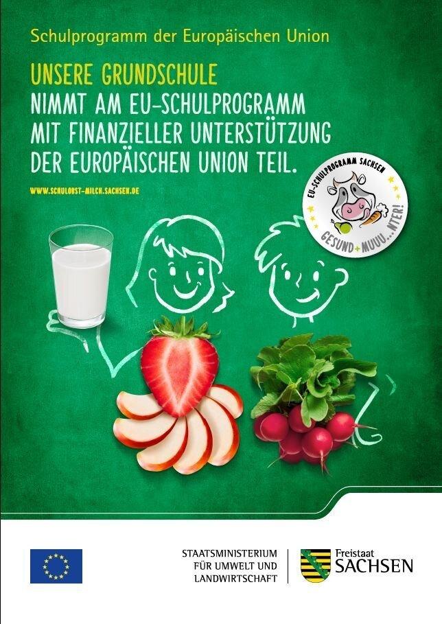 EU Schulprogramm