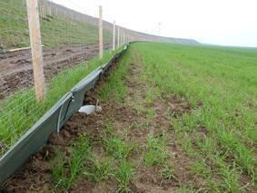 Perfekt aufgebauter Amphibienschutzzaun aus Folie. Die Eimer sind korrekt an den Zaun angeschlossen und ebenerdig eingegraben.