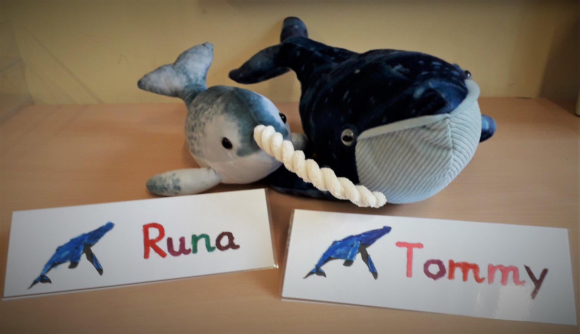 Runa und Tommy