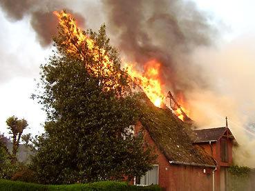 Hausbrand 1