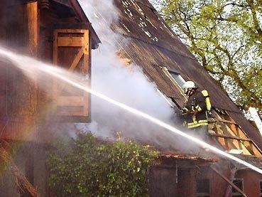 Hausbrand 2