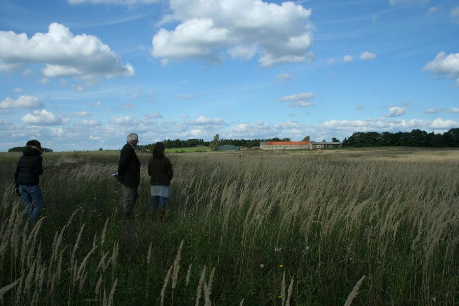 OeLaLa-Land 2008 (Brachland)