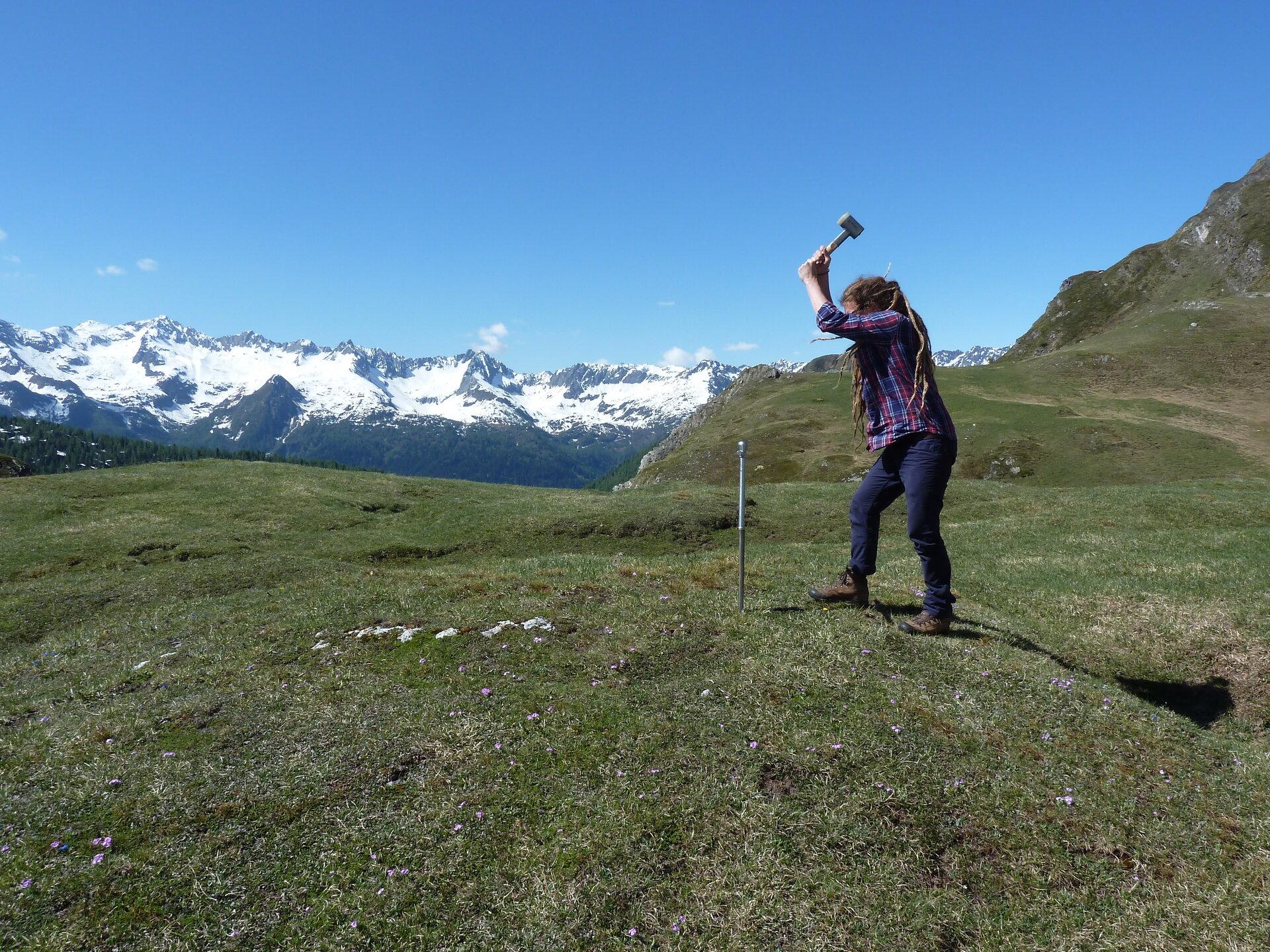 Probenahme in den Alpen