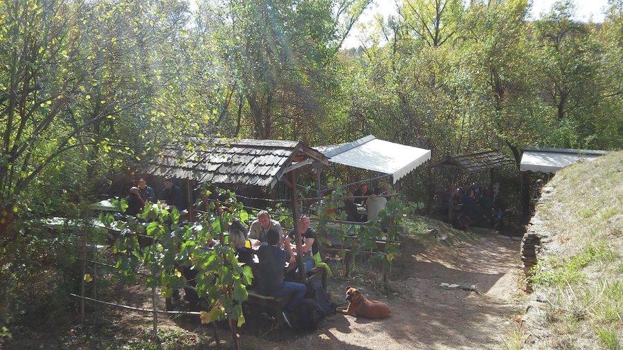 Terrasse Straußwirtschaft 1