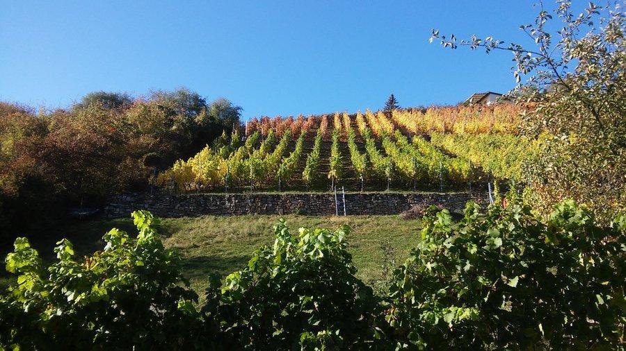 Blick Berg Herbst