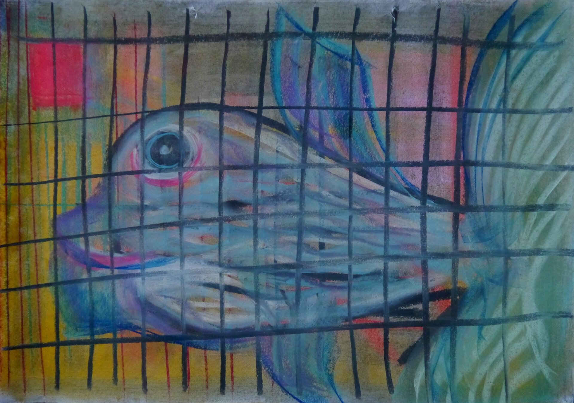Fisch in Gefangenschaft