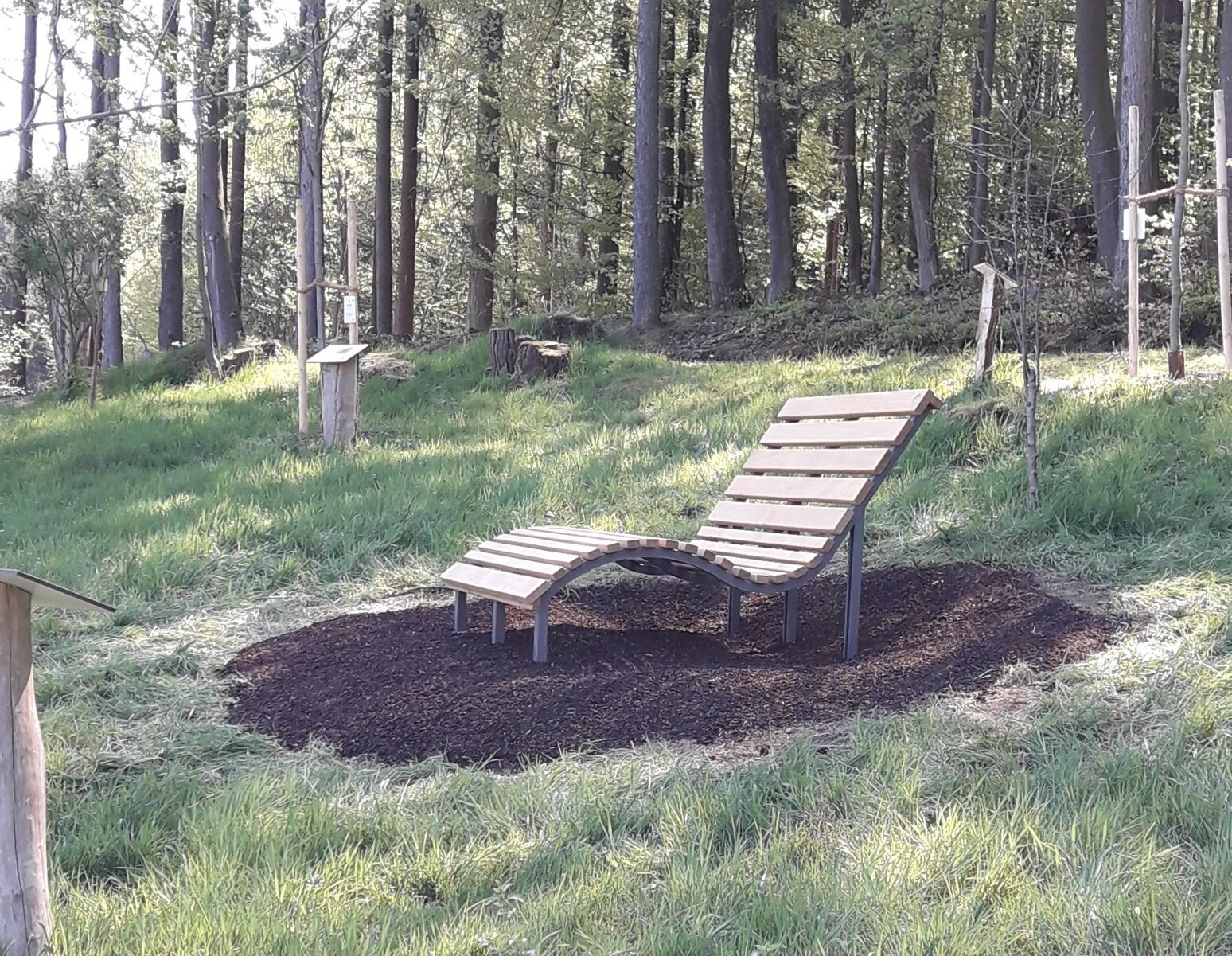 Waldsofa im BAUMreich
