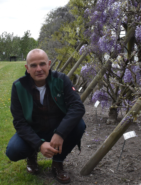 Andreas Wrede