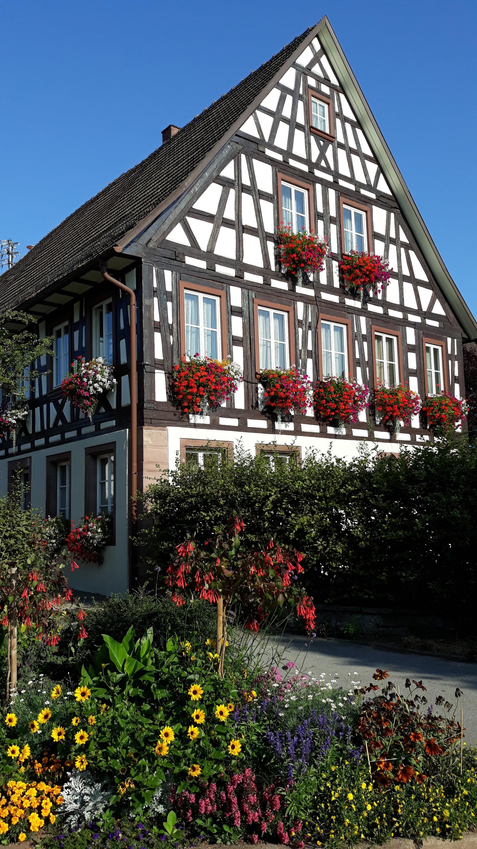 Rathaus im Sommer