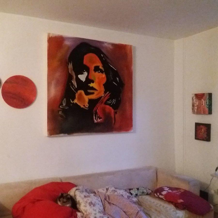 /galerie/23845/im-neuen-zuhause.html