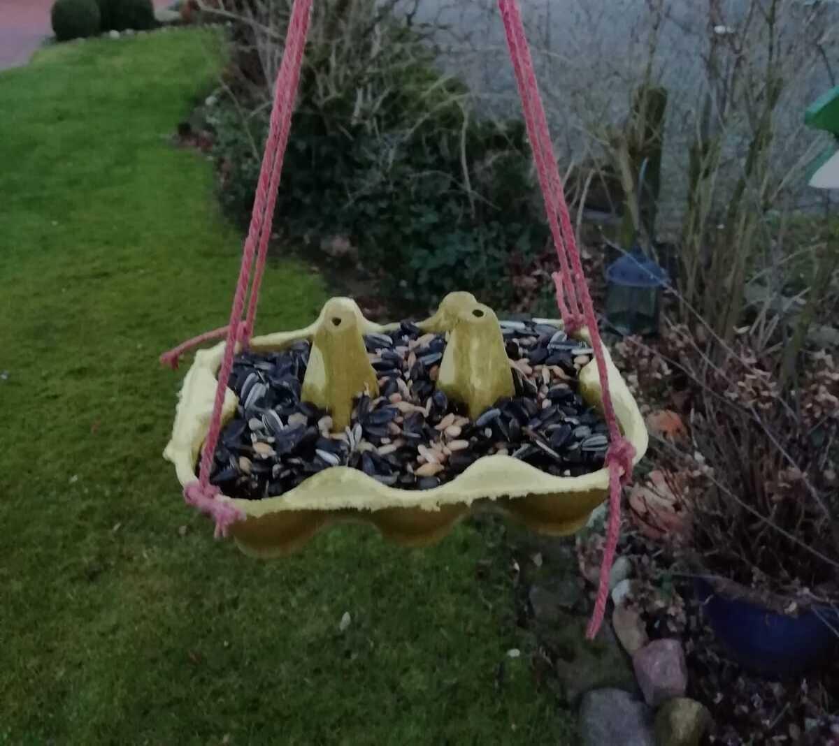 Vogelfutter im Eierkarton