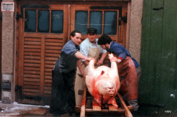 Schlachten 1991