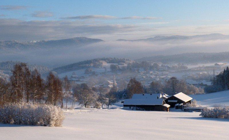 Prackenbach_im_Nebel