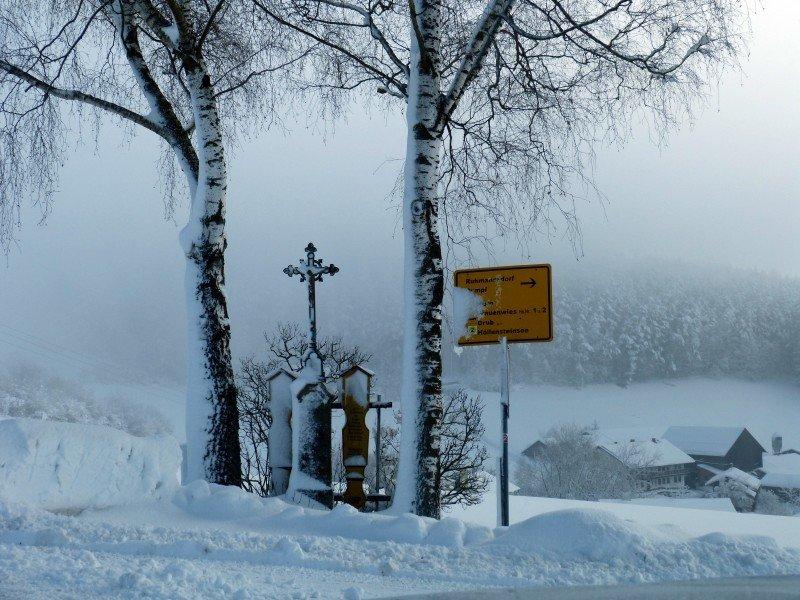 Winter_in_Ruhmannsdorf