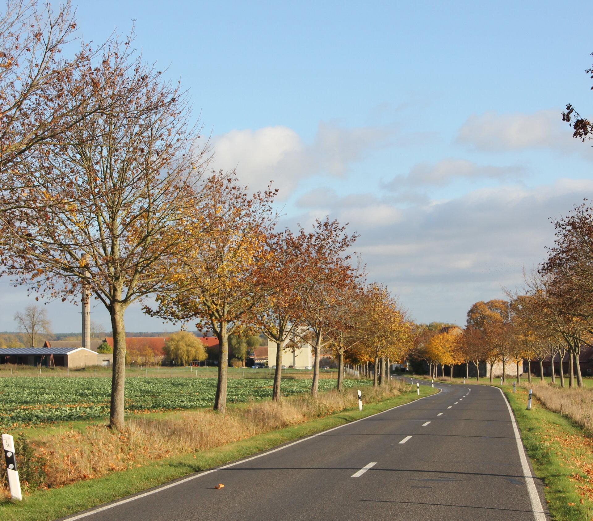 Anfahrt aus Richtung Meyenburg