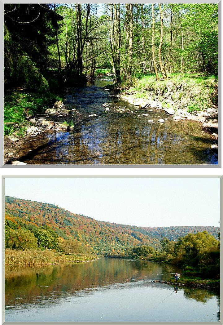 Nieme und Weser