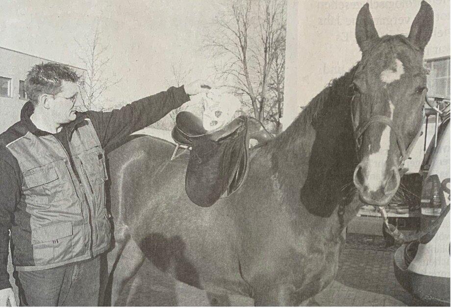 Sattler Jens Brockmann kennt sich mit der Anatomie der Pferde aus